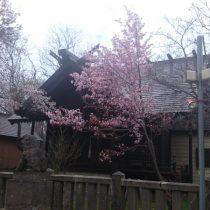 石狩八幡神社