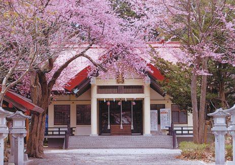 豊栄神社 社殿正面